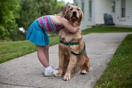 Кучетата мразят да бъдат прегръщани