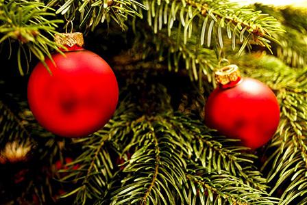Коледният дух се настани в София