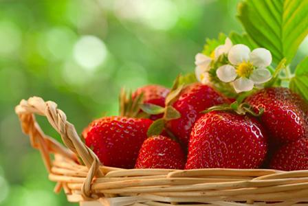 Здравословното хранене изисква сезонни продукти