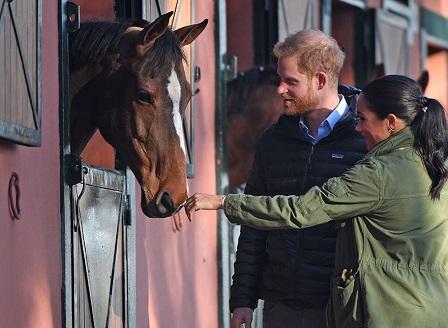 Принц Хари и съпругата му Меган научиха за интересна терапия с коне