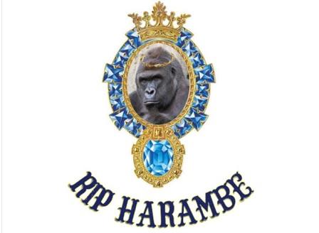 Илън Мъск написа рап песен за убита горила