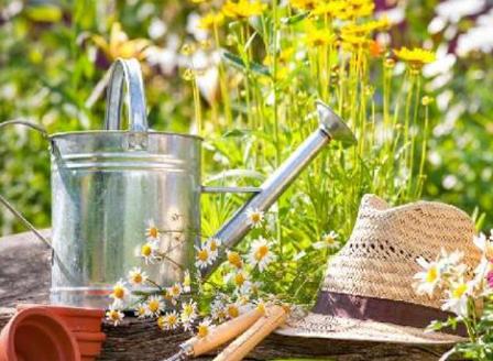 Грижи за градината през май