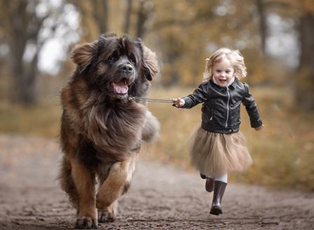 Децата израснали с куче имат по-малък риск да развият шизофрения