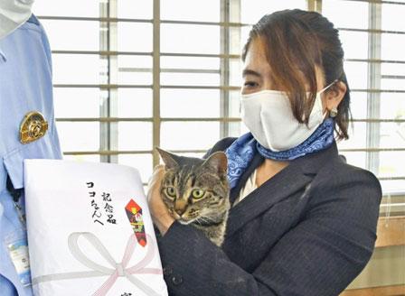 Котка, спасила човек, беше назначена за началник на полицейско управление